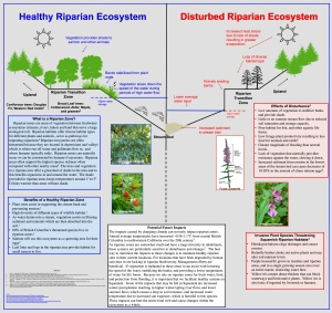 Riparian Sign -Kavanagh PDF